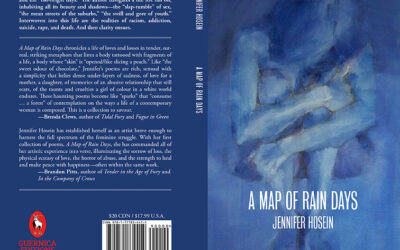 Review of A Map of Rain Days by Ivy Reiss of The Artis Magazine